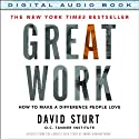 Great Work: How to Make a Difference People Love (       UNABRIDGED) by David Sturt Narrated by Eli Woods