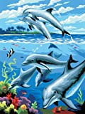 Royal & Langnickel Painting by Numbers Junior Small Art Activity Kit, Dolphins