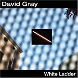 David Gray GRAY, DAVID-WHITE LADDER