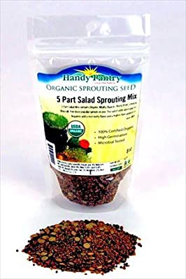 5 Part Salad Sprout Seed Mix -1/2 Lbs (8 Oz) - Organic Sprouting Seeds: Radish, Broccoli, Alfalfa, Green Lentil & Mung Bean - For Sprouts from Living Whole Foods