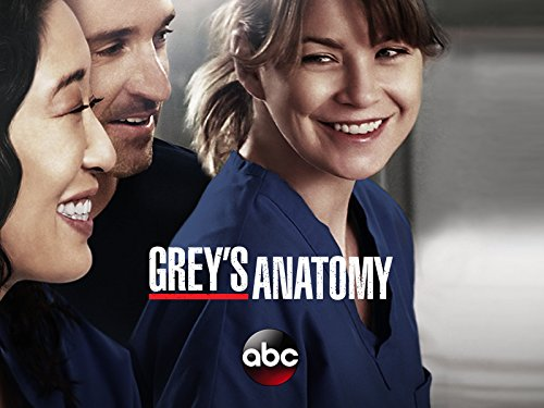 Grey's Anatomy – Staffel 10 [dt./OV]