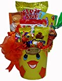 Delight Expressions® Easter Ducky Gift Pail - A Holiday Gift Basket for Kids
