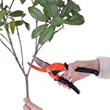 Ohuhu® Traditional Ideal Bypass Pruning Shears / Garden Scissors / Tree Trimmer / Tree Clippers / Hand Pruners / Hedge Shears / Hand Grass Shears / Bonsai Cutters