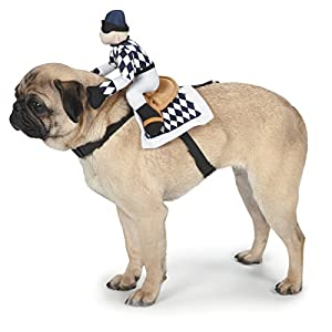 Zack & Zoey Show Jockey Saddle Dog Costume, Medium
