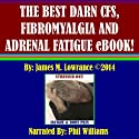 The Best Darn CFS, Fibromyalgia and Adrenal Fatigue eBook! Audiobook by James M. Lowrance Narrated by Phil Williams
