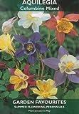 Aquilegia Columbine Mixed Summer Flowering Bulbs