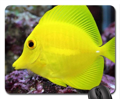 tang-mouse-pad-mouse-pad-mousepad-pesce