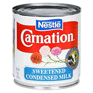 can you use evaporated milk in place of milk