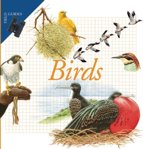 Birds (Field Guides)