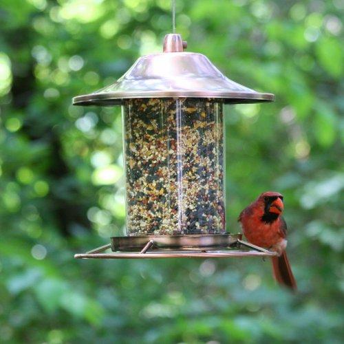 Copper Wild Bird Feeder Hanging Birds Backyard Garden Deck ...