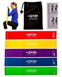High Quality Exercise Bands By Flexise Fitness - Set of 5 Resistance Loop Bands for Yoga / Pilates / Physical Therapy. Bonus Carry Case & Workout Guide Included.