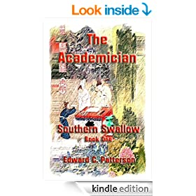 The Academician - Southern Swallow Book I (The Southern Swallow 1)