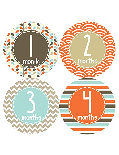 Months in Motion 379 Monthly Baby Stickers Baby Boy Months 1-12 Milestone