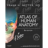 Atlas of Human Anatomy: Including StudentConsult Interactive Ancillaries and Guides, 6e (Netter Basic Science)...