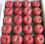 山形県東根市若木産 サンふじりんご/10kg/20個入り2段重ね