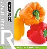 素材辞典[R(アール)] 006 フレッシュ野菜&フルーツ