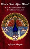 img - for What's Next After Wicca? Non-Wiccan Occult Practices and Traditional Witchcraft book / textbook / text book
