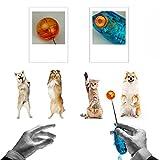 Tping Hundetraining Target Stick Hunde Katze Welpen Kommandant Clicker Training Trainer Hilfsmittel Retractable -