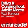 Wait Forever (Estiva Mix)