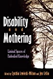 Disability and Mothering: Liminal Spaces of Embodied Knowledge (Critical Perspectives on Disability)
