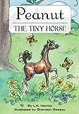 Peanut THE TINY HORSE