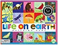 eeBoo Life On Earth Memory Game