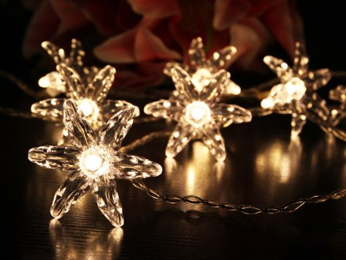 Warm White Led String Lights With Flower, Christmas Lights, Party Lights (Free Shipping)