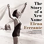 Summary of The Story of a New Name: Neapolitan Novels, Book 2 |  Book Junkie