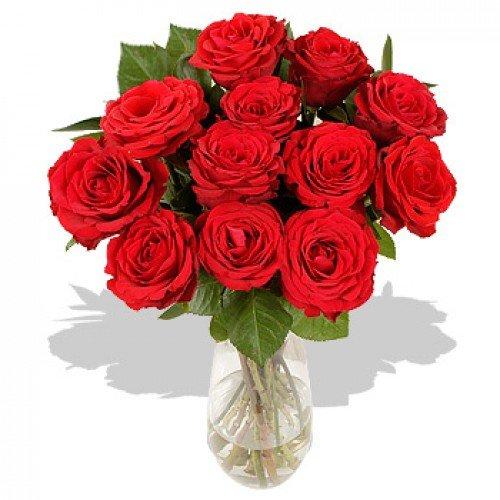 ramo-de-12-rosas-rojas-frescas-estuche-te-verde-a-dominguez-envio-a-domicilio