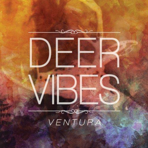 Buy Vibe Ventures Now!
