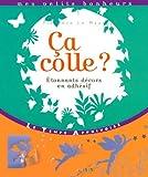 echange, troc Florence Le Maux - Ca colle ? : Etonnants décors en adhésif