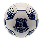 GiftLocalUK Everton F.C. Skill Ball NV - A Great Christmas / Birthday Gift Idea For Men And Boys