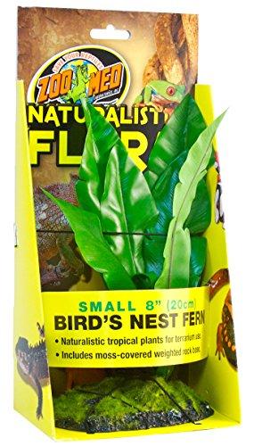 Zoo-Med-Bird-Nest-Fern-Plante-en-Plastique-pour-Terrarium-20-cm