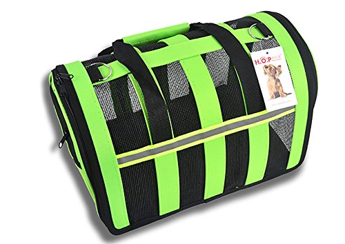 Dog Carrier for Small Dogs up to 11lbs Pet Home for Travel Tour Trip Outing Indoor Outdoor Kennel Crate Cage Collapsible (Green, Large)