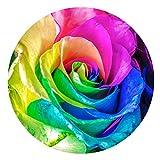 [FOR U DESIGNS]個性的なデザイン 円形 マット 滑り止め付き 保護マット mat 直径約60cm 綺麗なバラ柄