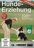 Hundeerziehung mit System: Verhaltensprobleme Mensch-Hund