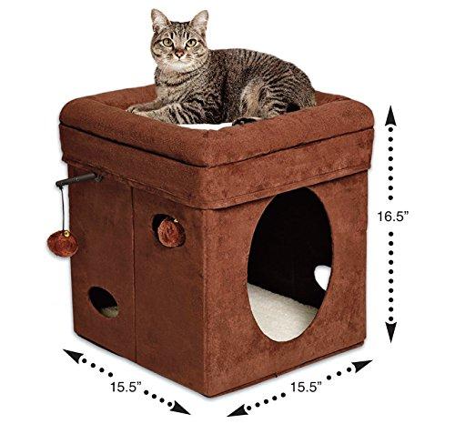 Cat Houses & Condos