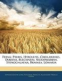 Ferns: Pteris, Hypolepis, Cheilanthes, Doodia, Blechnum, Woodwardia, Stenochlaena, Brainea, Lomaria (1144043425) by Lowe, Edward Joseph