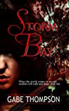 img - for Storm Bay book / textbook / text book