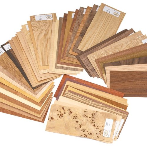 Wood Identification Kit