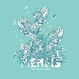 Wind Up by Memfis