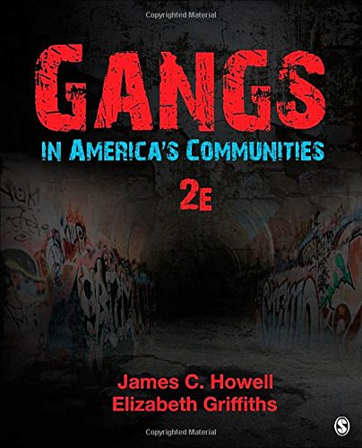 problems within the community gangs Problems within the community: the existence of gangs since the beginning [].