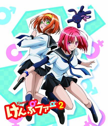 けんぷファーVOL2(初回限定生産) [DVD]