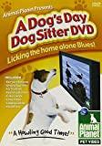 Animal Planet Presents A Dog's Day Dog Sitter DVD
