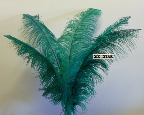 Ostrich Deluxe Formal Palm Tree Green Plume Feather 18 24 Long 10 Pcs to Decorate Eiffel Tower Vase
