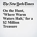 On the Hunt, 'Where Warm Waters Halt,' for a $2 Million Treasure | Fernanda Santos