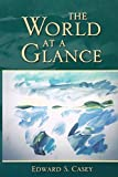 img - for The World at a Glance (Studies in Continental Thought) book / textbook / text book