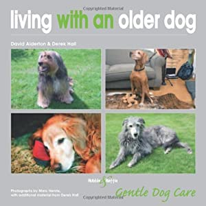 Living With An Older Dog Gentle Dog Care from Hubble & Hattie