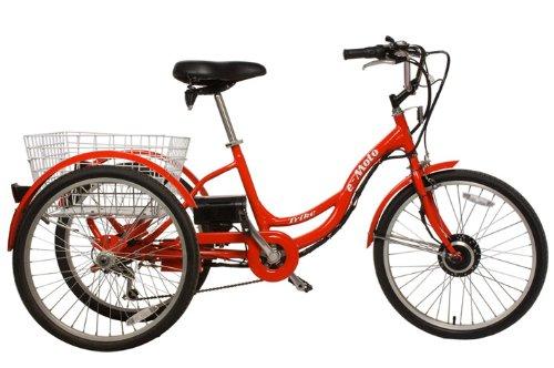 e-Moto Trike Three Wheels Electric Tricycle