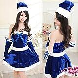 サンタ (衣装+帽子+アームカバー) 3点セット コスチューム 青 フリーサイズ
